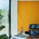 FarrowandBall_dutch-orange